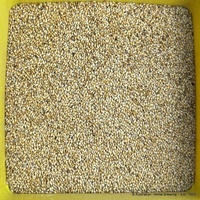 Malt grain Crystal Medium Malt  (ebc 40-60)  1 kg - Joe White image